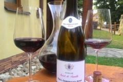 Červená vína nejen z Velkých Bílovic